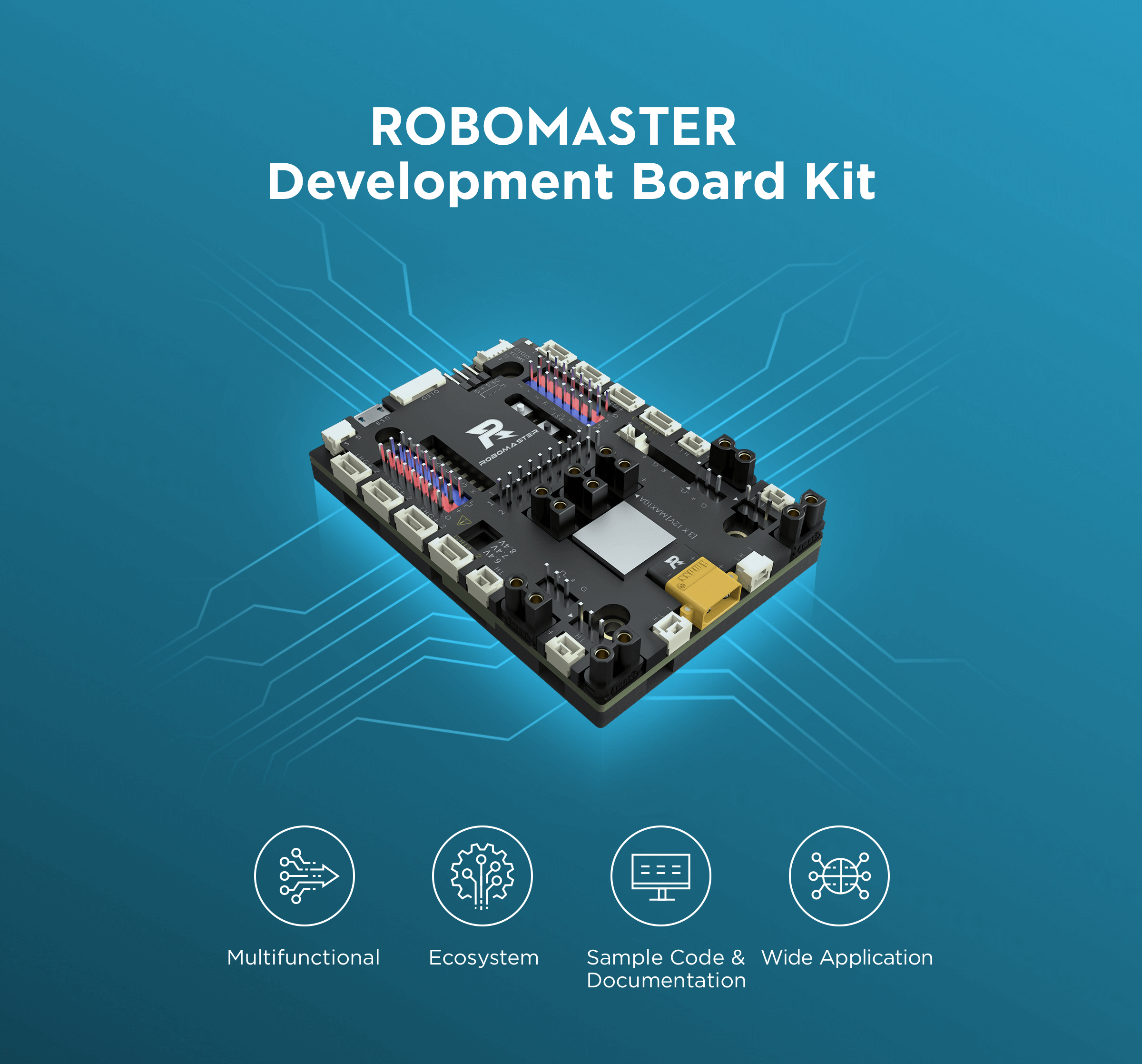 Product Picture of Development Board